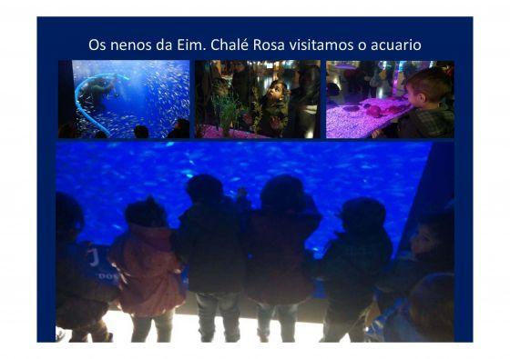 Os pequenos/as da escola infantil de Pontedeume visitaron a acuario de A Coruña (27/03/2015)